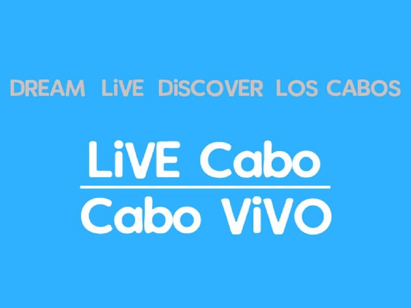 Why CaboViVO