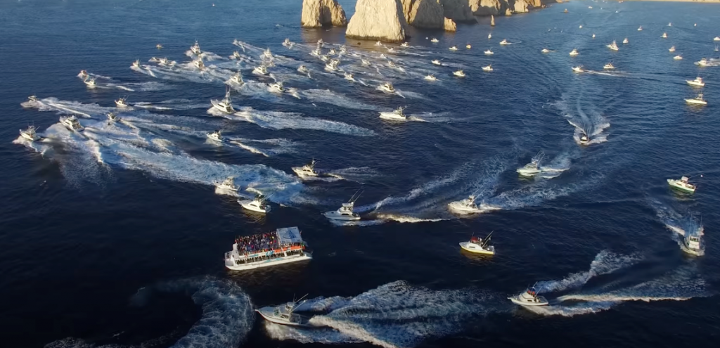 Fishing Tournament Season in Los Cabos